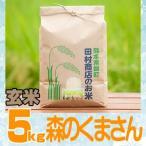 29年産 熊本県産★森のくまさん玄米5kg