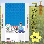 29年産新米 千葉県産コシヒカリ5kg送料無料(北海道・沖縄・九州の場合は別途料金がかかります)