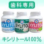 歯科専用 キシリトールガム ボトル SALE 【メール便不可】