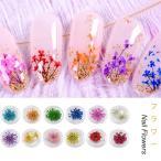 送料無料 フラワー 押し花 ドライフラワー ネイル 花 12色自由選べる ネイル用品 ホイル ジェルネイル・レジンパーツの埋め込みに