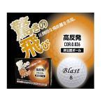 Blast ゴルフボール 1ダース【12個】オーバーディスタンスタイプ 非公認球 ホワイト B-K2W【送料無料】