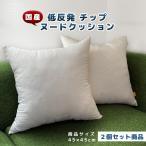 クッション 低反発 ウレタン チップ 45×45 cm 日本製 【 送料無料 】 ごろ寝 リラックス フロア 2個 セット 圧縮梱包 ヌードクッション