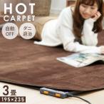 ホットカーペット 3畳 本体 電気カーペット 3畳用 カーペット TEKNOS テクノス 195×235cm 収納 折り畳み ダニ退治機能