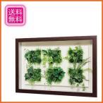 アートパネル おしゃれ インテリアアートパネル グリーン 壁掛けアートパネル 観葉植物 リーフアートパネル モダン 北欧