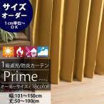 カーテン ドレープカーテン 遮光1級2級 防炎 AB503524プライム&マイティー サイズオーダー巾101〜150cm×丈50〜100cm 1枚