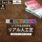 人工芝 庭 ガーデン いつでもGreen レギュラータイプカラー30mm 1m×2m