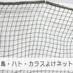 NET21ベランダ 鳥・鳩・カラスよけ 防鳥ネット 巾501〜600cm 丈30〜100cm JQ