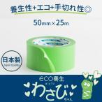 養生テープ 剥がし跡が残らない 緑 剥がせる マスキングテープ DIY わさびちゃん 50mm×25m 1巻