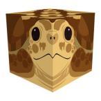 Cube Box 小(ソーダキャンディ5個入) ウミガメ 10個セット CB512