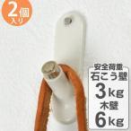 フック らくらく掛けフック ホワイト 石膏ボード用 木壁 両用 2個入り ピンタイプ ( ピンフック 石膏ボード 石膏 木壁 ベニヤ 壁 )