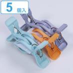 洗濯バサミ ピンチ COCOSORA Wキャッチピンチ 5個入 ( 洗濯ばさみ 洗濯ピンチ 洗濯用品 )