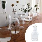 フラワーベース LABO GLASS C ( 花瓶 ガラスベース エアプランツ )