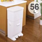 ゴミ箱 ふた付き 分別 セパ ツインペダルペール 2段 56L ( スリム ペダル ダストボックス )