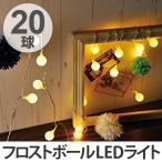 イルミネーションライト レス イヴェール LED20球 フロストボールライト ( 電飾  LED 飾り )