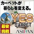 シャギーラグ - カーペット 激安 毛100% ウールアスワンカーペット中京間12畳(364×546cm)広巾テープ加工 カーペット:アスグラッツ/GLT