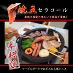 【焼肉プレート】煙が気にならない お部屋OK 軽量で収納楽 ダイエット 遠赤外線効果でおいしく焼ける セラコール炭火焼器 CE-401 (焼肉プレート)
