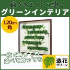 WALL GREEN 3553 グリーンインテリア 造花 グリーンポット 観葉植物 パネル 額縁 インテリアデコ (GR3553)