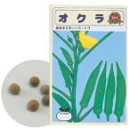 アーテック 野菜の種 オクラ 苗床付 2739
