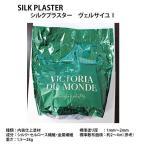 シルクプラスター 内装仕上塗材 ラメ仕様 天然リキッドウォールペーパー ヴェルサイユ1 V152〜V160