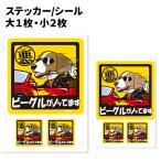 犬 車 ステッカー ビーグル 犬 ちょい悪 正方形セット
