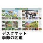 ショッピング学習机 学習机マット 学習デスクマット デスクマット 季節の図鑑・85×51cm 裏面世界地図