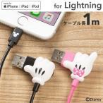 ディズニー Lightningケーブル ライトニングケーブル 可愛い iphone 充電 ケーブル ハンドシリーズ MFi 取得品 キャラクター 1m disney_y