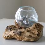 ガラスベース・フラワーベース・花瓶・流木・glass planter/flower vase