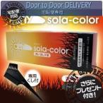 そらカラー(sola-color)光ヘアクリーム80g ダークブラウン(6個セット)+レビューで選べるプレゼント付