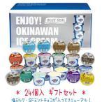ショッピングブルー ブルーシールアイスクリーム ギフトセット24  お中元・ギフトに最適!送料無料  (日祝の翌日・月曜日着指定不可)