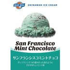 【4Lサイズ2点以上送料無料】アイスクリーム 業務用サイズ(4リットル) ブルーシールアイス SFミントチョコ