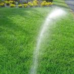 芝生の種・美しい緑を保つTOP-GREEN 10Kg(芝)