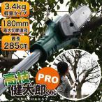 P7倍以上!高枝切りチェーンソー 電動 充電式 コードレス 軽量 「高枝健太郎くんPRO」 YSGT-0513 SIS