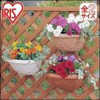 植木鉢 ウォールポット 壁掛け 幅28cm アイリスオーヤマ