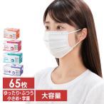 マスク 不織布 夏用 不織布マスク アイリスオーヤマ 公式 使い捨てマスク おしゃれ プリーツマスク 65枚入 アイリスオーヤマ