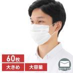 プリーツマスク ゆったり大きめサイズ 60枚入 APN-60LLW ホワイト アイリスオーヤマ 【メール便】