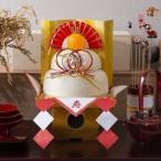 鏡もち 飾り 正月 正月飾り 鏡餅 アイリスの鏡もち 中 生きりもち・生まるもち 500g アイリスオーヤマ