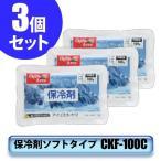 アウトレット/訳あり/わけあり (3個セット)保冷剤ソフトタイプCKF-100C(まとめ割まとめ買い/ アイリスオーヤマ)