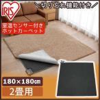 ラグ 絨毯 ラグマット 北欧 ホットカーペット 洗えるホットカーペット 2畳用 ラグ カーペット 限定数量超特価