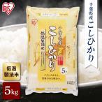 米 お米 5kg 送料無料 一等米 千葉県産 こしひかり 白米 5キロ 低温製法米 ご飯 うるち米 精白米 アイリスオーヤマ