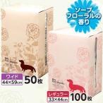 P14倍以上!ペットシーツ レギュラー ワイド BOX 薄型 香り付き アイリスオーヤマ 限定数量超特価