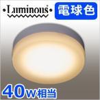 LED小型シーリングライト 電球色 40W相当 TN-CLS-L 小型 LED照明 485lm 小型 ライト 引掛けタイプ ミニシーリングライト 省エネ エコ ルミナス