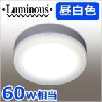 LED小型シーリングライト 昼白色 60W相当 TN-CLM-N 小型 LED照明 810lm 照明 ライト 引掛けタイプ ミニシーリングライト 省エネ エコ ルミナス