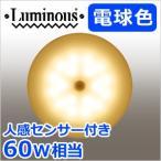 LED小型シーリングライト 人感センサー付き 電球色 60W相当 TN-CLMS-L 小型 LED照明 820lm 照明 ライト 引掛けタイプ ミニシーリングライト ルミナス