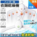 乾燥機 衣類乾燥機 ハンガー型 熱風 冷風 シワ伸ばし 急速乾燥 急速 衣類 スマートハンガータイプ エアスムー Airsmoo-02