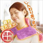 送料無料 アプロ ショルダーウォーマー KWS-M201 日本伝統文化 甲斐巻き 電器毛布 丸洗い 温度調節 可能 冷え性 対策 暖房機器 apro