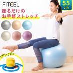 バランスボール 55cm ヨガボール ジムボール フィットネス ダイエット 室内 運動 体幹 トレーニング 健康 バランスボール si-balanceball-55-aqua
