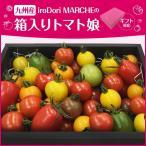 九州産 iroDori MARCHEの箱入りトマト娘 800g