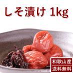 梅干し 無農薬 無添加 送料無料 しそ漬南高梅 1kg 熊野のご褒美 無添加 紀州 和歌山  お歳暮 御歳暮