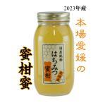 はちみつ 国産はちみつ 蜂蜜 ハチミツ 愛媛県産 みかんの蜜(単花蜜) 1Kg