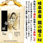 ≪送料無料≫新米 平成28年度 龍の瞳 岐阜県産100% 5kg袋 (りゅうのひとみ) いのちの壱